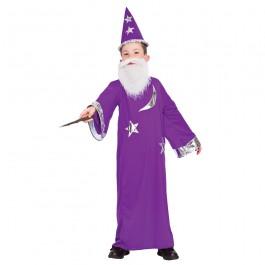 Wizard (Fancy Dress)