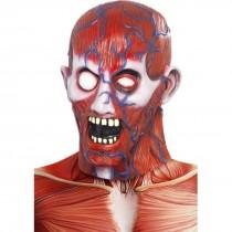 Adult Horror Anatomy Mask