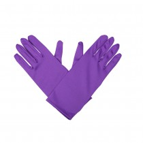 Gents Gloves - Purple