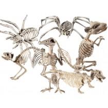 Skeleton Prop (Fancy Dress)