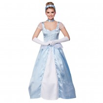 Sweet Cinders Costume - front view